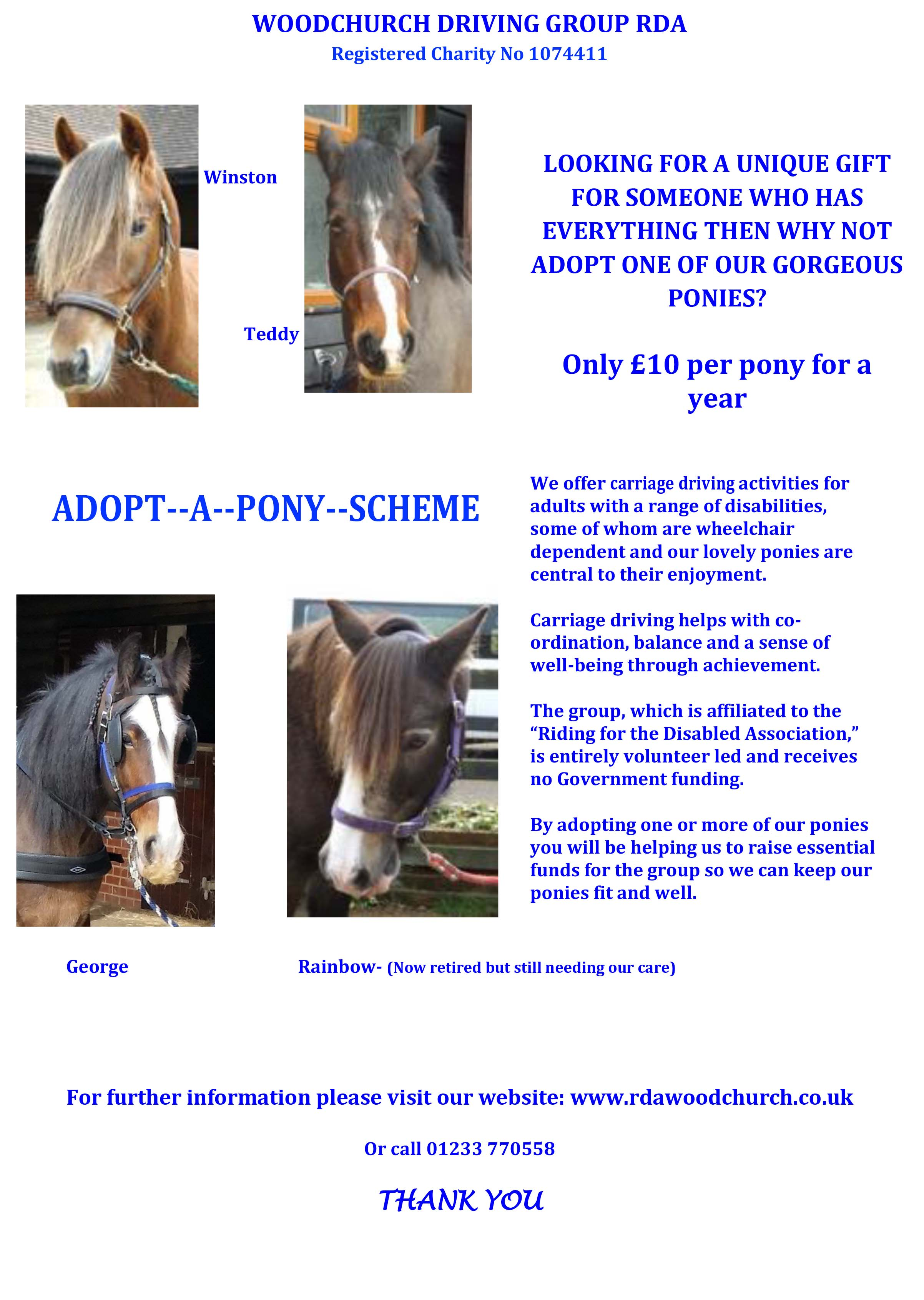 Adopt a Pony Poster